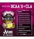 Shinning BCAAs + CLA de Army Nutrition